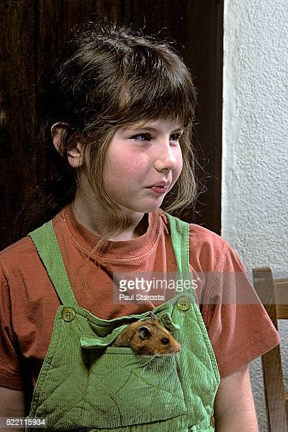 young girl with a mesocricetus auratus (golden hamster, syrian hamster) in her pocket - golden hamster stock pictures, royalty-free photos & images