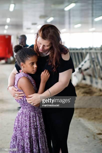 """rapariga com o autismo que conecta com vacas. - """"martine doucet"""" or martinedoucet - fotografias e filmes do acervo"""