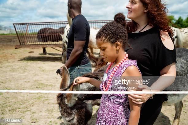 """joven con autismo conectando con caballos en un centro especial. - """"martine doucet"""" or martinedoucet fotografías e imágenes de stock"""