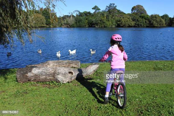 young girl with bicycle watch water birds in a pond - rafael ben ari stock pictures, royalty-free photos & images
