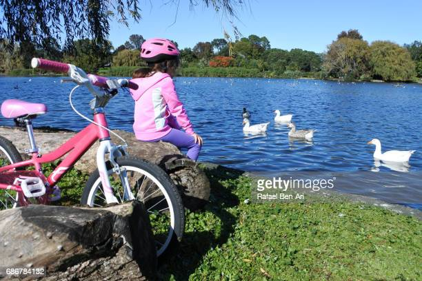 young girl with bicycle watch water birds in a pond - rafael ben ari ストックフォトと画像