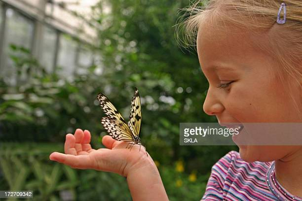 Young girl with butterfly on hand