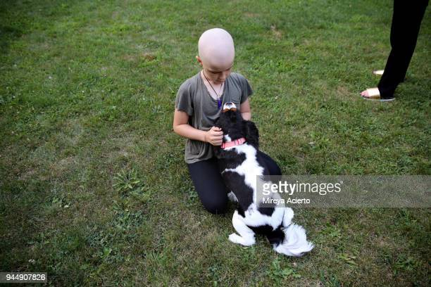 a young girl with cancer, playing with her dog. - cancer illness stock pictures, royalty-free photos & images