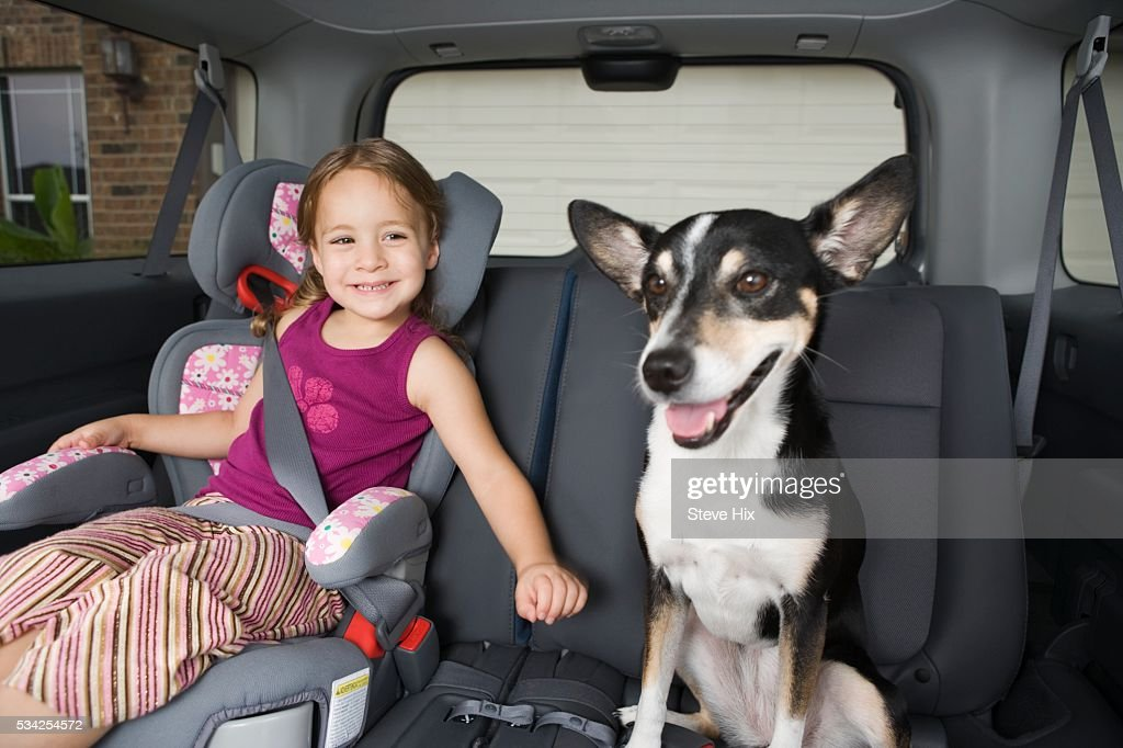 Young Girl with Her Dog in a Car : Stock Photo