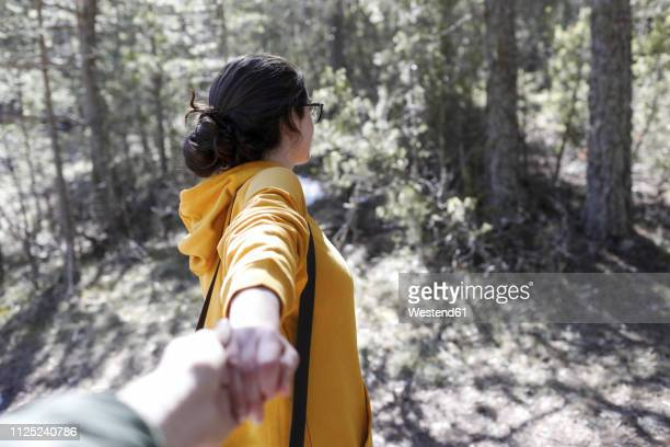 young girl with yellow sweater holding hand of man in the forest - seguindo - fotografias e filmes do acervo