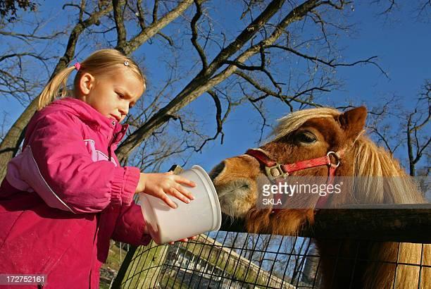 Junge Mädchen und Ihr Kind Füttern pony/horse