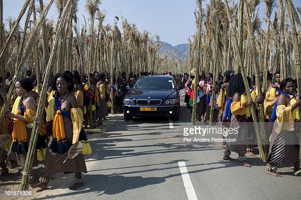 Young girls carry reeds at a traditional Reed dance ceremony at the Royal Palace on August 30 in Ludzidzini Swaziland About 80000 virgins from all...