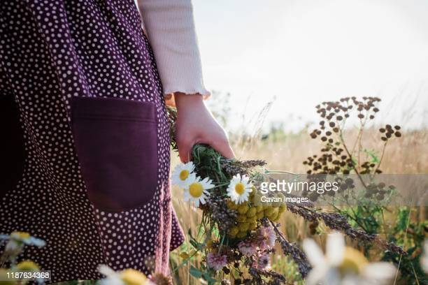 young girls hand holding a bunch of wildflowers in a meadow at sunset - fiore di campo foto e immagini stock