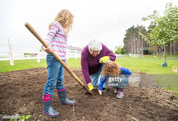 Young Girls Helping Grandma Plant Potatoes in Garden