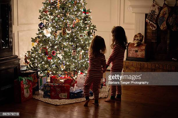 young girls looking at christmas tree - southern christmas stock pictures, royalty-free photos & images