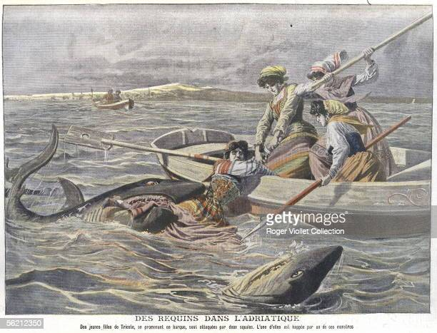 Young girls on small boat attacked by the sharks in Adriatic Sea Engraving Le Petit Journal August 1908
