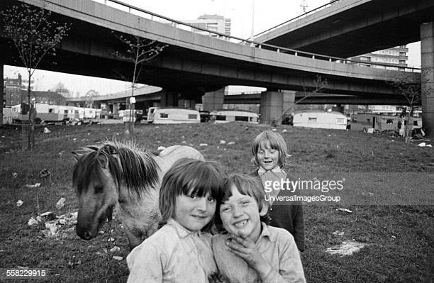 Young gypsy boys and a pony on their encampment under the Westway motorway London UK 1973