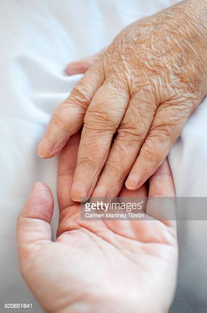 a young hand touches an old wrinkled hand - tod stock-fotos und bilder