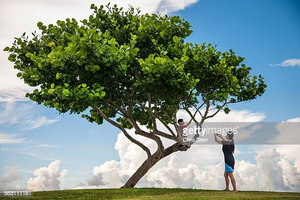 Young Happy Asian Boy climbing a tree with his Mom