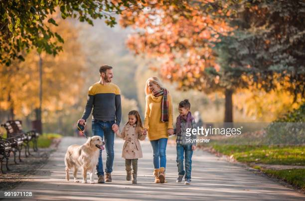 young happy family holding hands while taking their dog for a walk in autumn day. - autumn dog stock pictures, royalty-free photos & images