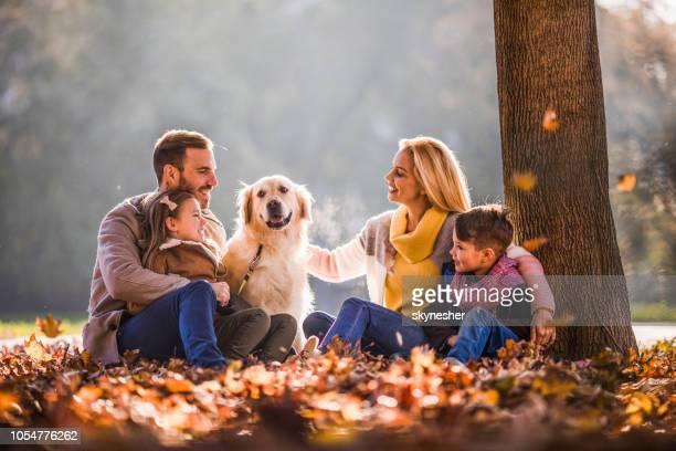 jovem família feliz relaxante com seu retriever no outono folhas no parque. - família de dois filhos - fotografias e filmes do acervo