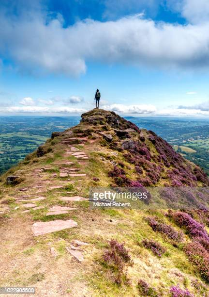 young hiker on black hill, or cats back, in the black mountains looking at the view in the brecon beacons national park - hügelkette stock-fotos und bilder