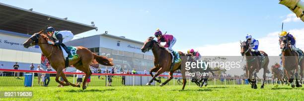 Young Hostess ridden by Fred Kersley wins the IGA Liquor BM64 Handicap at Geelong Racecourse on December 14 2017 in Geelong Australia