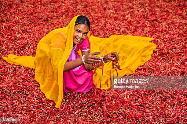 Young Indian woman sorting red chilli peppers