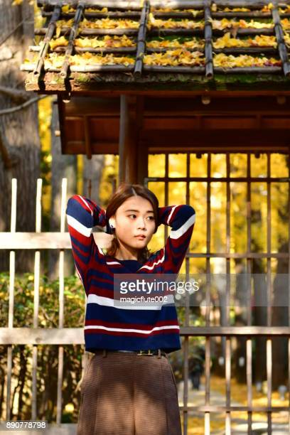 young japanese woman enjoying golden yellow ginkgo trees - suginami stock photos and pictures