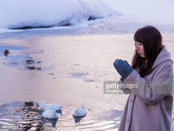 冷凍・ アイスにアヒルと遊ぶ日本の若い女性。