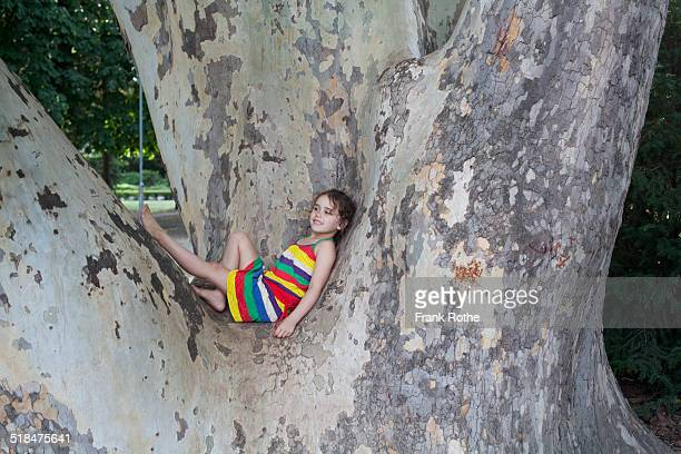 young kid enjoys to sit in a tree - young thick girls stock photos and pictures