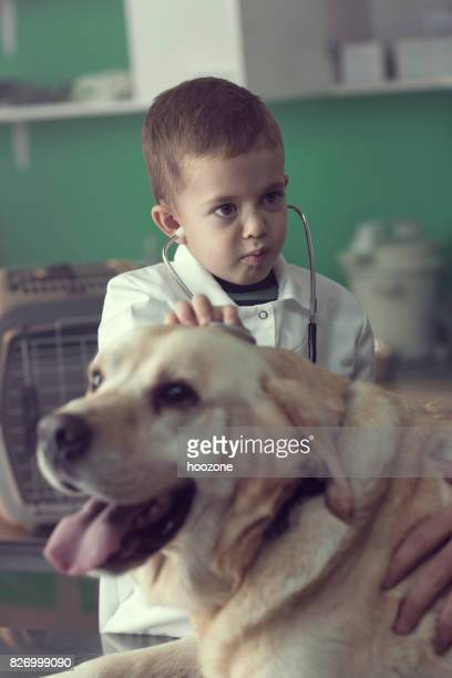 Young kid Playing a Veterinarian at the Vet's Office