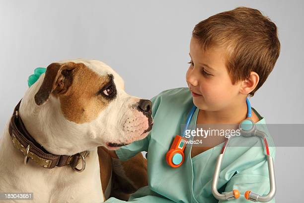 young kid with vet attire and toy stethoscope petting a dog - american bulldog stockfoto's en -beelden