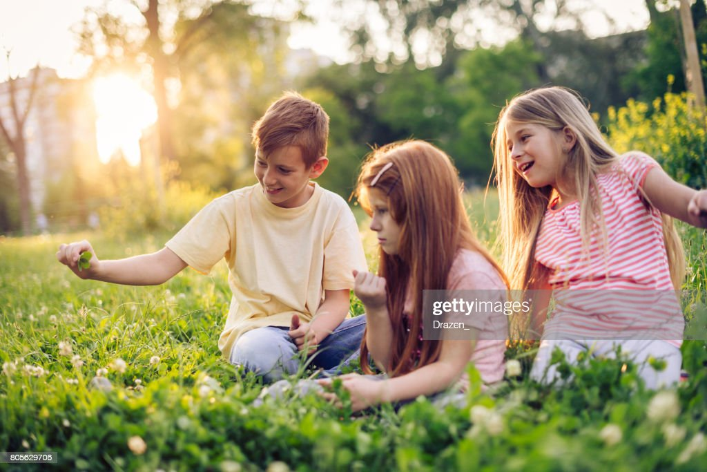Young kids looking for four leaf clover in park in summer : Stock Photo
