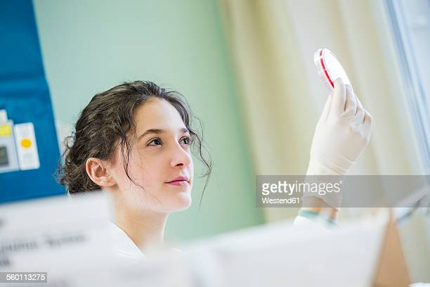 Young lab technician looking at agar plate