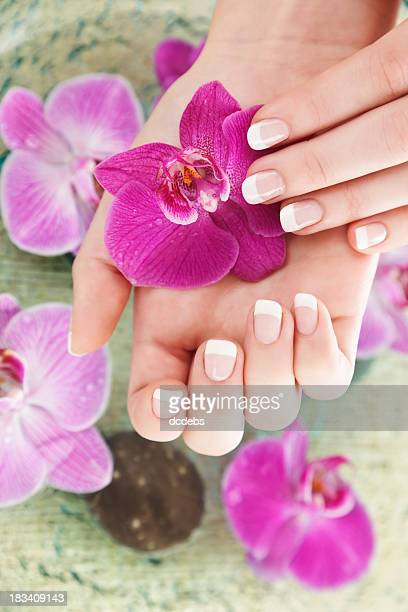 Young ladies hands holding a purple flower
