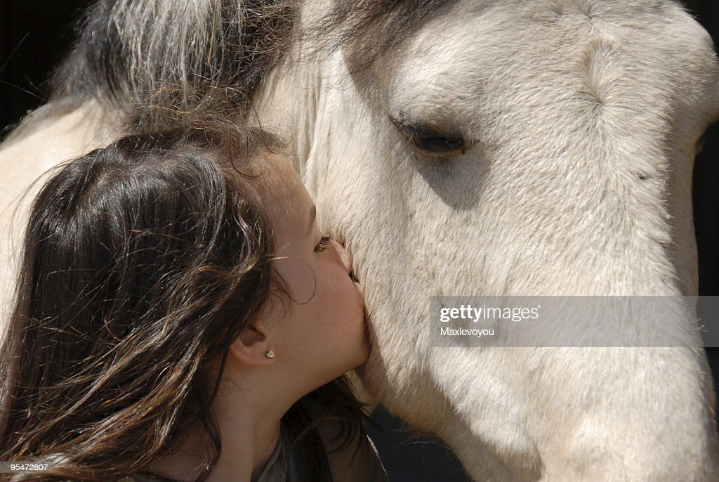 A young lady kissing a horse on the side of the head : Stock Photo