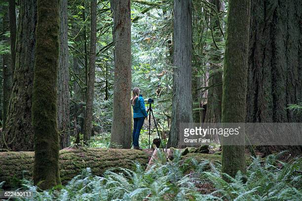 Young lady photographing  in forest