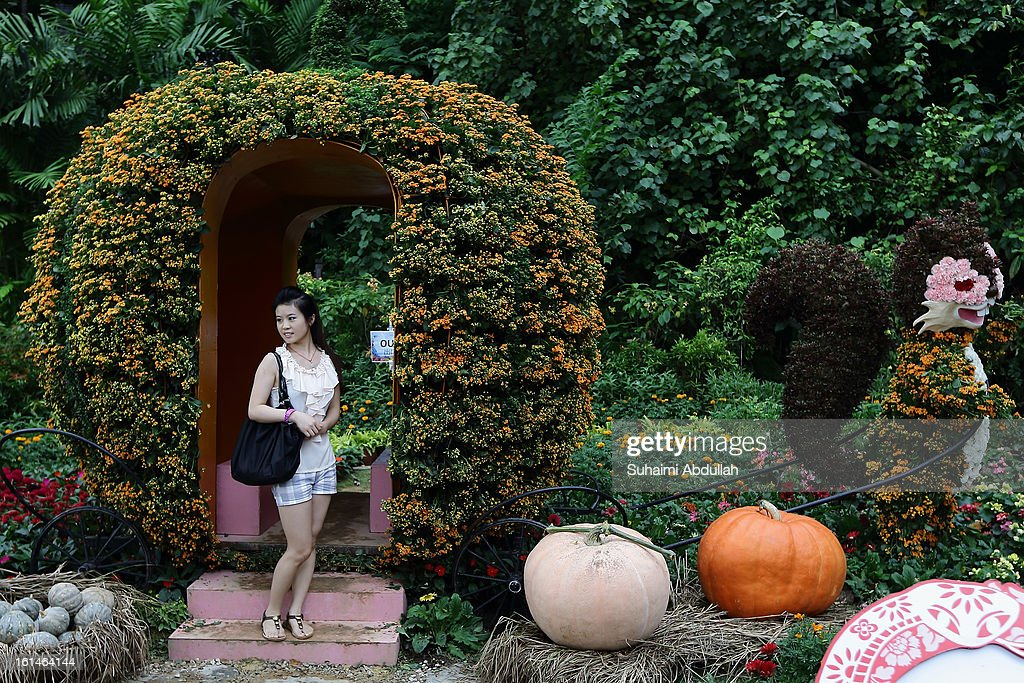 A young lady poses for a photograph in front of a flower display in the shape of a pumpin carriage at the Sentosa Flowers exhibition at Palawan Beach on February 11, 2013 in Singapore. Millions of spring flowers decorate the island in celebration of the Chinese New Year, the year of the Snake.