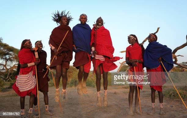 young maasai warriors, kenya - dietmar temps 個照片及圖片檔