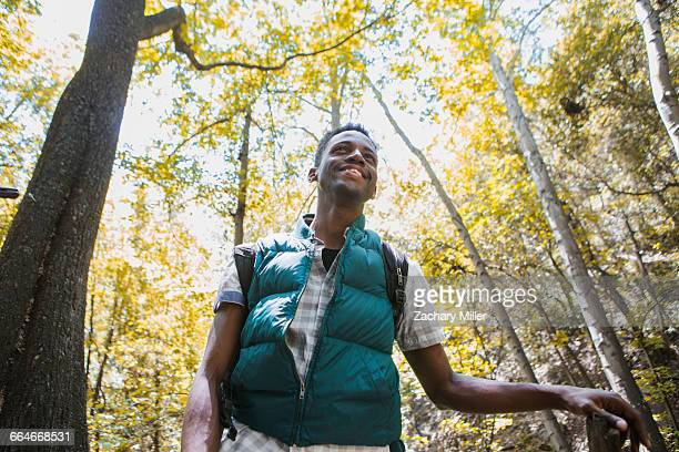 Young male hiker hiking in forest, Arcadia, California, USA