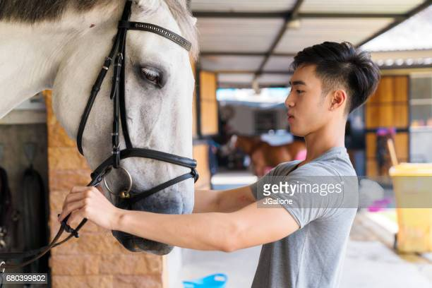young male horse rider attaching the reins to his horse's bridle - equestrian event stock pictures, royalty-free photos & images