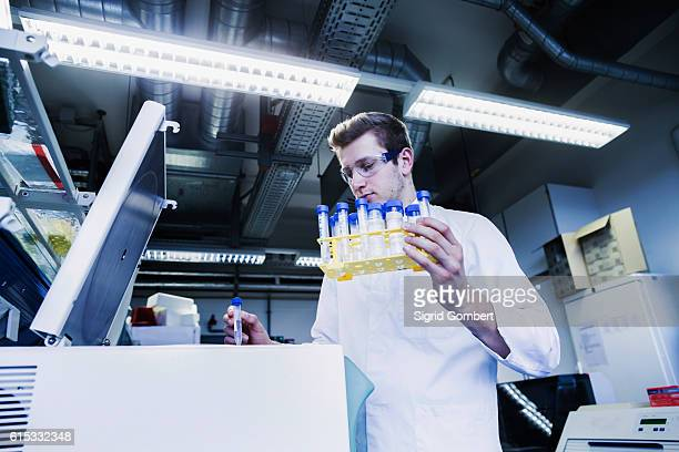 young male scientist examining test tube in a pharmacy laboratory, freiburg im breisgau, baden-württemberg, germany - sigrid gombert 個照片及圖片檔