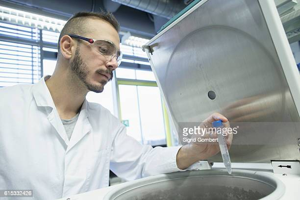 young male scientist examining test tube in a pharmacy laboratory, freiburg im breisgau, baden-württemberg, germany - sigrid gombert stock-fotos und bilder