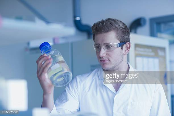 young male scientist holding liquid bottle in a pharmacy laboratory, freiburg im breisgau, baden-württemberg, germany - sigrid gombert foto e immagini stock