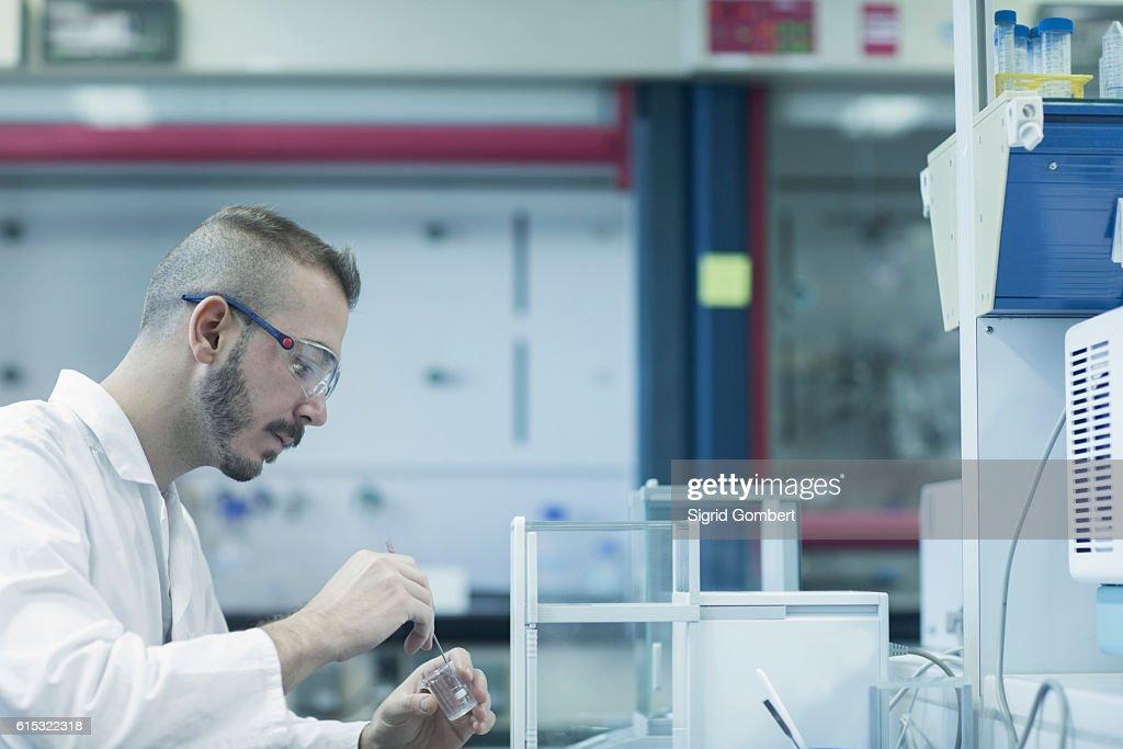 Young male scientist working in a pharmacy laboratory, Freiburg im Breisgau, Baden-Württemberg, Germany : Stock-Foto