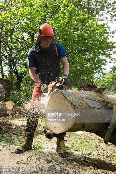 Young male tree surgeon using chainsaw on tree trunk