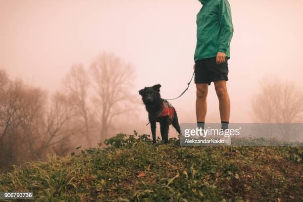 Young man and his dog in a morning walk