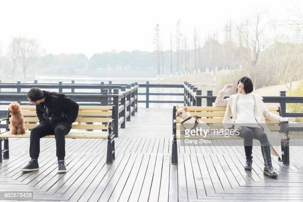young man and woman with pets relaxing on park bench - stranger stock photos and pictures
