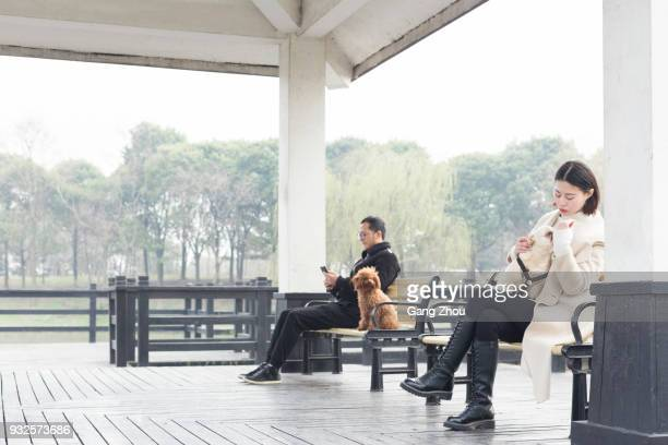 young man and woman with pets relaxing on park bench - stranger stock pictures, royalty-free photos & images
