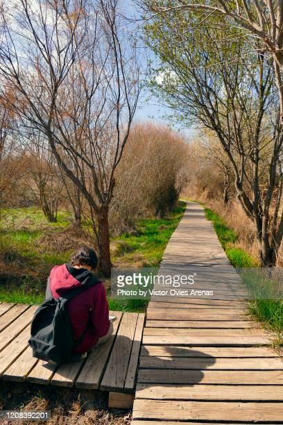 young man artist drawing sitting on a wooden path in the forest - victor ovies fotografías e imágenes de stock
