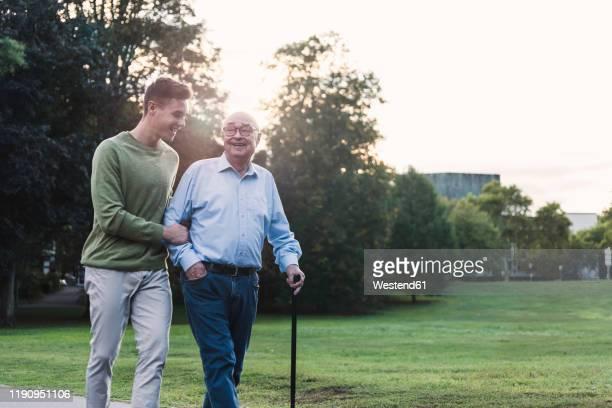 young man assisting his grandfather walking in a park - nur erwachsene stock-fotos und bilder