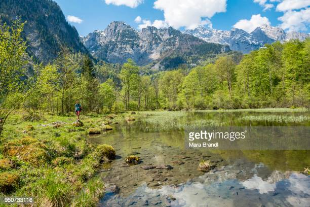 Young man at lake, mountains reflected in Mittersee, Salet am Koenigssee, National Park Berchtesgaden, Berchtesgadener Land, Upper Bavaria, Bavaria, Germany