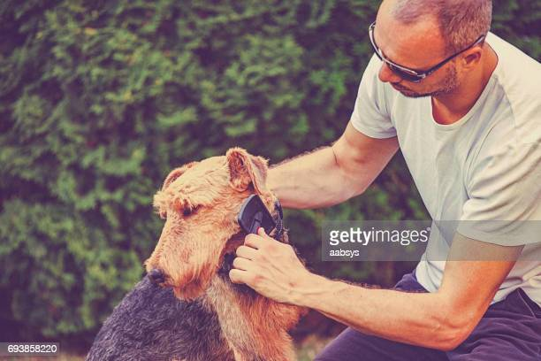 Young man brushing his dog in backyard.