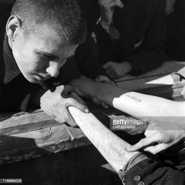 A young man checks the numbers tattooed on the arms of Jewish Polish prisoners coming from Auschwitz in Dachau concentration camp in late April or...